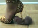 High heel cock torture gone horribly wrong!