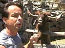 Unmannered goat spits reporter in the face.